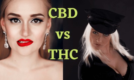 CBD vs THC | Which Difference Will Get You Fired | CBD Vs THC Differences